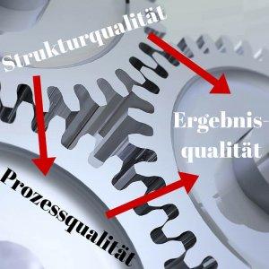 Coaching Methoden, Prozessqualität, Strukturqualität, Ergebnisqualität