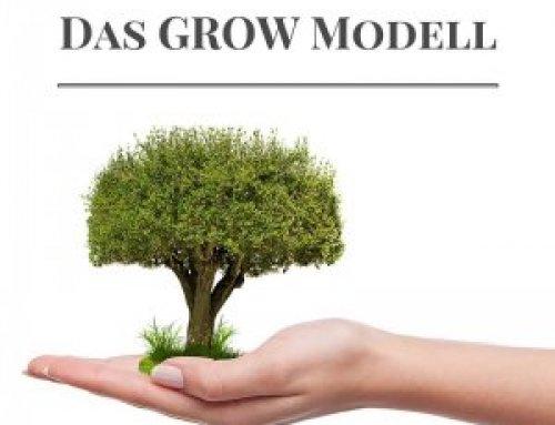 Ihr eigenes Coaching Tool konzipiert aus dem GROW Modell & systemischen Fragen
