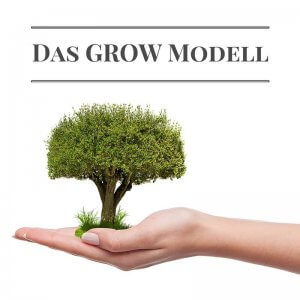 Das GROW Modell